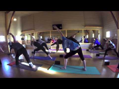 istruttori felini di yoga