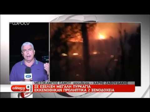 Εκκενώθηκαν ξενοδοχειακές μονάδες στη Σάμο – Πυρκαγιές σε πολλά μέτωπα  | 24/08/2019 | ΕΡΤ