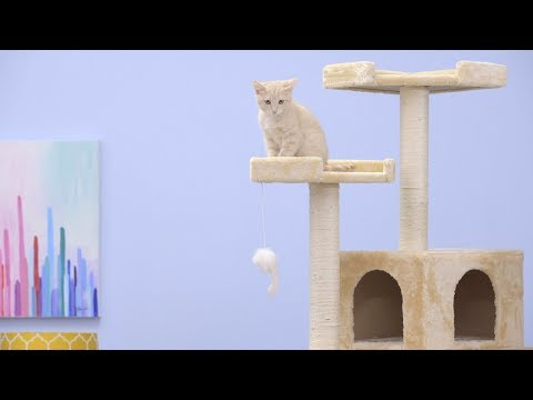 Go Pet Club Cat Trees