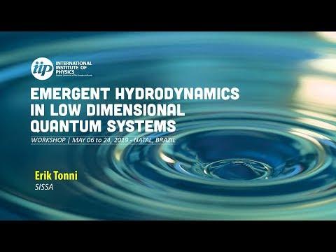 Entanglement hamiltonians in 1D free lattice models after a global quantum quench - Eric Tonni