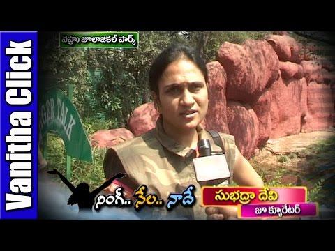 Special-Focus-on-Zoo-Curator-Subhadra-Devi-Ningi-Nela-Naade-Vanitha-TV-08-03-2016