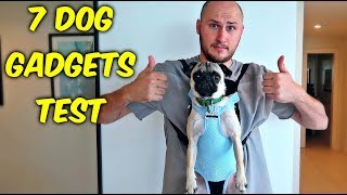 7 Dog Gadgets Put to the Test part 5