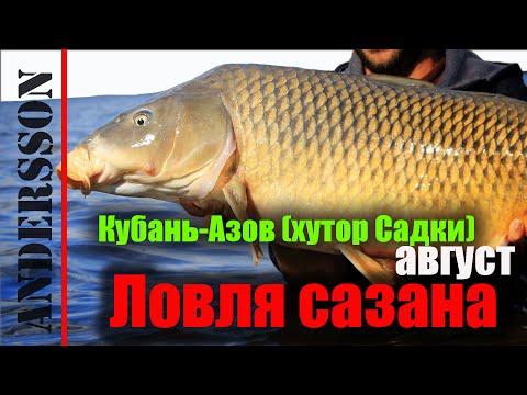 карла маркса рыбная ловля  краснодарский край