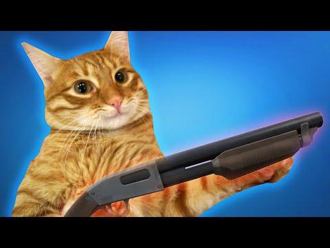Мой кот СНОВА пытается меня убить :О - DomaVideo.Ru