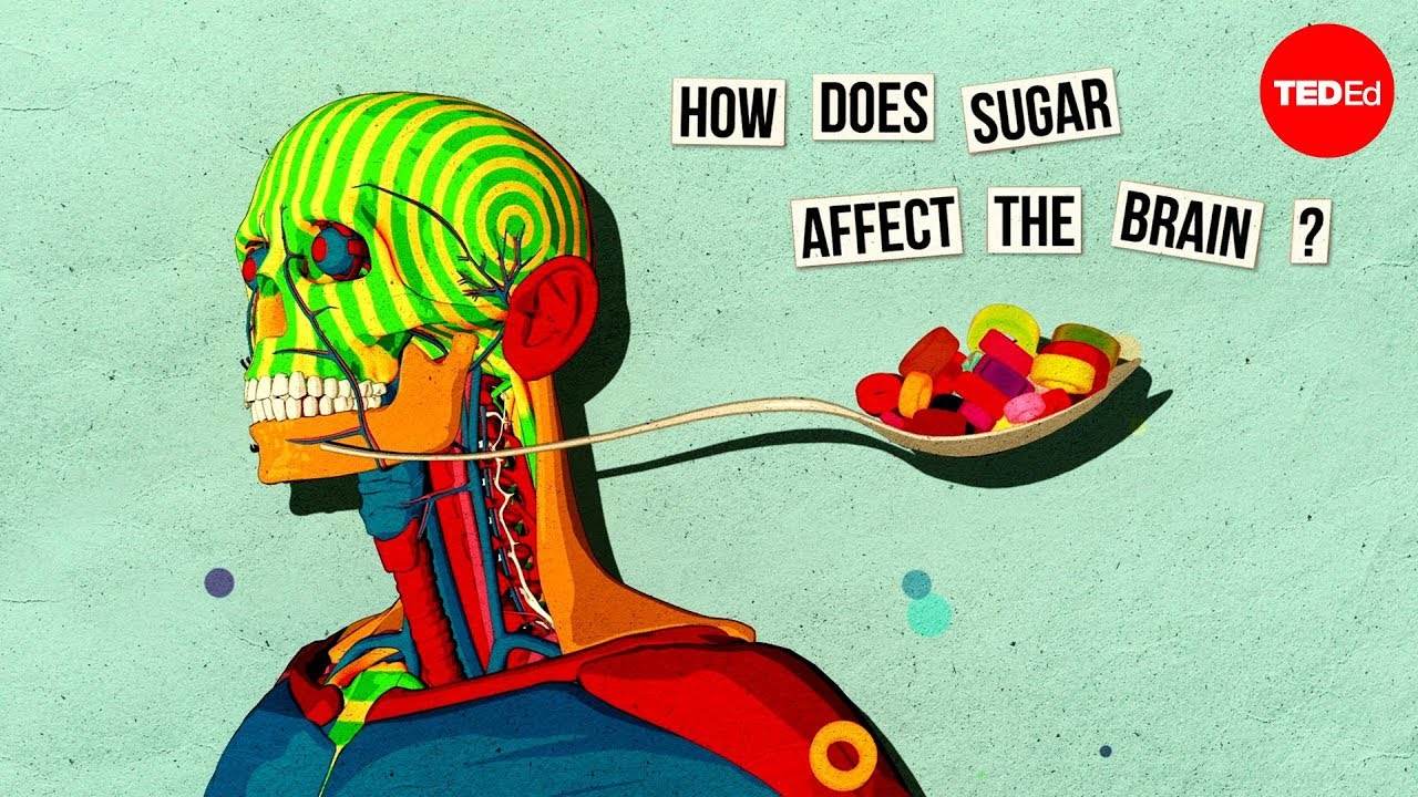 This is Your Brain on Sugar