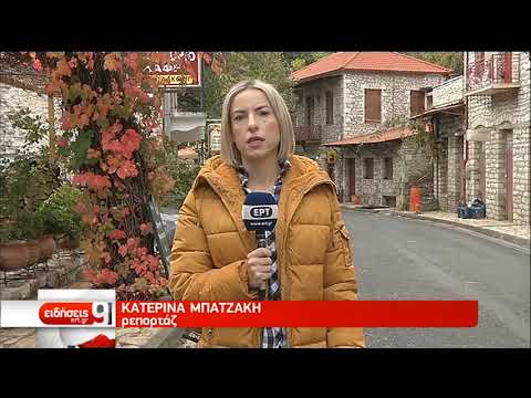 Σε δομή στη Βόρεια Ελλάδα μεταφέρονται 103 αιτούντες άσυλο | 15/11/2019 | ΕΡΤ