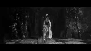 Steve Aoki, NERVO & Tony Junior - Lightning Strikes (Official Video)
