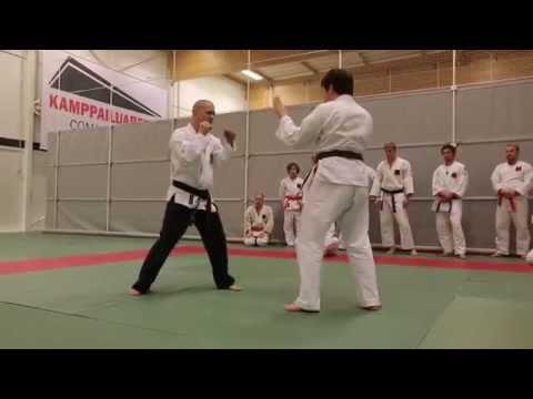 Hokutoryu jujutsu training clips – takedowns