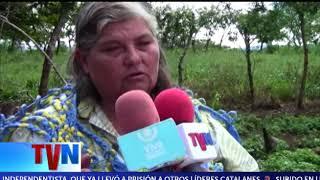 PROGRAMAS DEL MEFCCA FORTALECE NEGOCIOS DEL CAMPO EN CAMOAPA