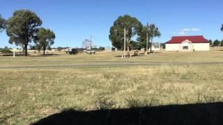 Murrumburrah Australia  city photo : Harden Murrumburrah Showground - Murrumburrah NSW