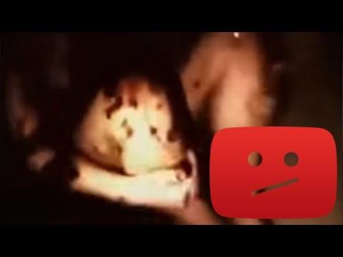 Videos caseros - ¿Video Filtrado de un Reptiliano REAL Provocó la Caída de YouTube?