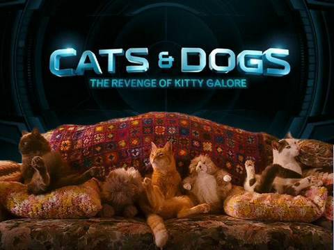 Reel World: DVD Tuesday - Cats & Dogs and Clash of the Titans