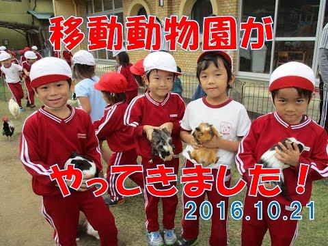 八幡保育園(福井市)に移動動物園がやってきました!エサをあげたり触ってみたり動物と触れ合いました!
