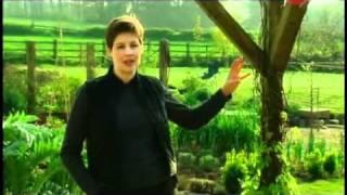 Сады английских садовников #8