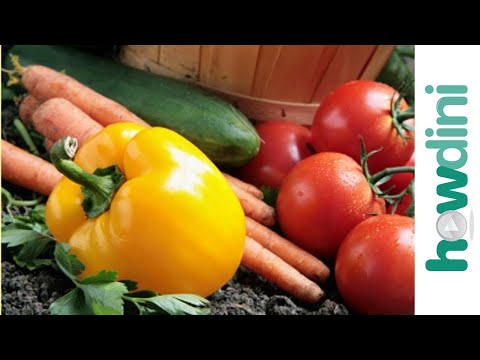 vegetables - http://www.howdini.com/howdini-video-7561504.html Organic gardening: How to grow an organic vegetable garden What does it mean to grow vegetables organically...