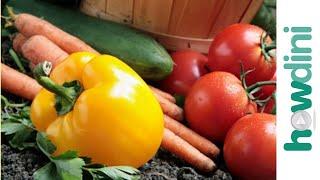 Organic Gardening 2013 YouTube video