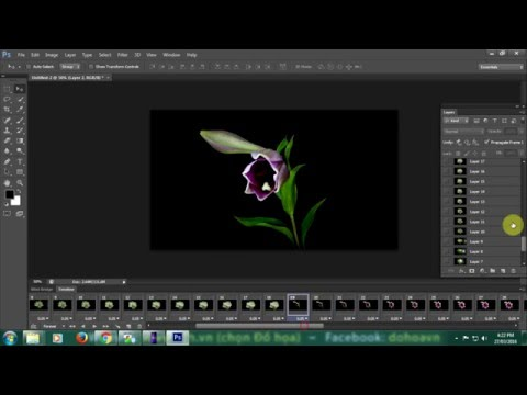 Tạo ảnh động hoa nở bằng photoshop