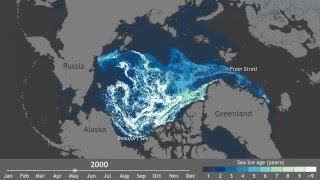 Arctic's oldest ice each week since 1990