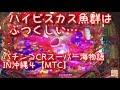 🌺ハイビスカス魚群が、ふつくしい…🌺「CRスーパー海物語IN沖縄4MTC319バージョン」 ごみくずパチンカス【30】