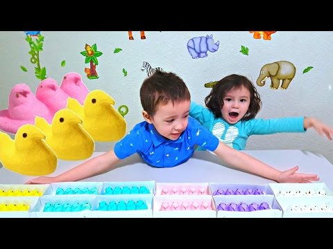 Video Learn Colors For Toddlers, Babies, and Children with Peeps Marshmallows - Fun Colours with Sweets download in MP3, 3GP, MP4, WEBM, AVI, FLV January 2017
