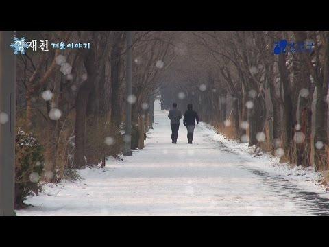 강남구 양재천의 겨울이야기