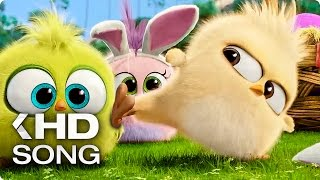 Nonton Easter Song by Baby Angry Birds (2016) Movie Film Subtitle Indonesia Streaming Movie Download