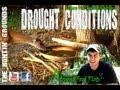 How to Deal WithDrought Conditions : Antler Development : Deer Management : The Huntin Grounds