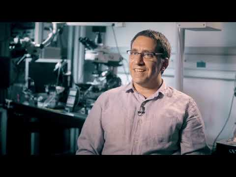 Dr. Ivo Spiegel - Zuckerman STEM Leadership Faculty Program