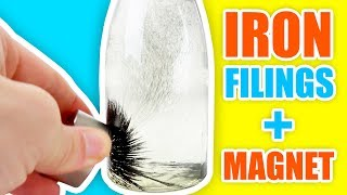 IRON FILINGS in WATER vs MAGNET | Satisfying Experiment