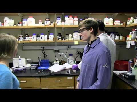 Dartmouth Studierende Forschende Trace Protein Konfigurationen