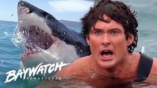 Video Great White Shark ATTACK On Baywatch! Will Mitch Save Jill?! Baywatch Remastered MP3, 3GP, MP4, WEBM, AVI, FLV Juni 2019