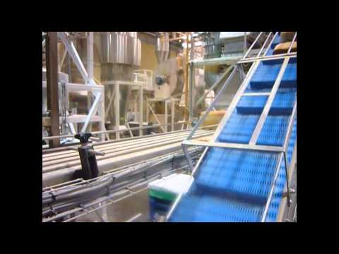 Gough Hygienic Conveyor - Bread Loaves
