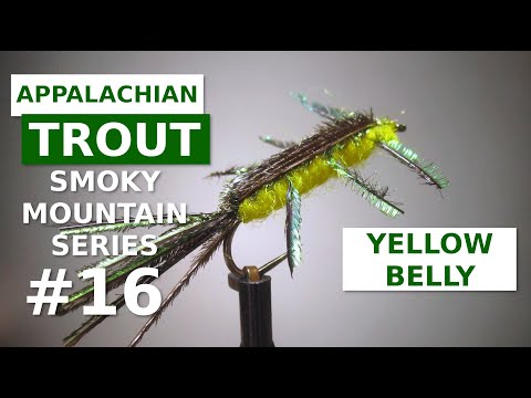 Yellow Bellied Nymph - Fly Tying Appalachian/Great Smoky Mountain Trout Patterns