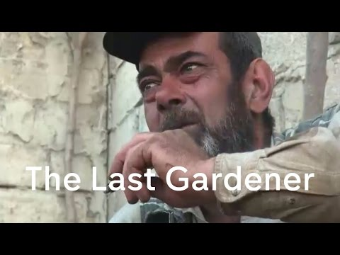 Inside Aleppo: the tale of the flower-seller (2016) (mini-doc) Some of the small pockets of humanity remaining in the Syrian city of aleppo