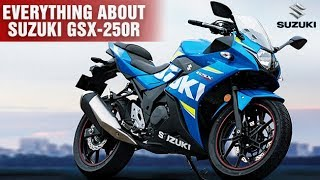 7. 2018 Suzuki GSX 250R   Gixxer 250   Overview