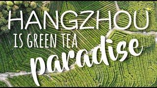 HangZhou 杭州 / LongJi 龙脊 tea culture