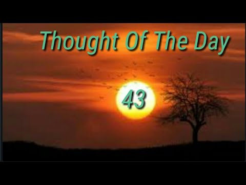 Quote of the day - Thought Of The Day - 43 / Daily Thoughts Or Quotes Of Great Person's