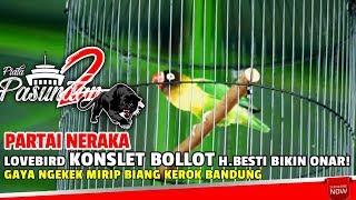 PIALA PASUNDAN 2 : Lovebird Konslet BOLLOT H.Besti Bikin Onar !Gaya Ngekek Mirip Biang Kerok Bandung