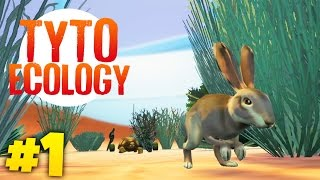 BUILDING OUR OWN ECOSYSTEM | Tyto Ecology (Week 1)