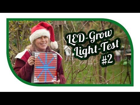 LED Grow Light Test #2 | Jungpflanzenanzucht Aussaat | Pflanzenbeleuchtung | Pflanzenlampen