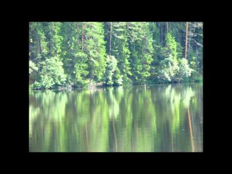 Suudlused suudeldud soolaste huultega - Kustas Kikerpuu (видео)