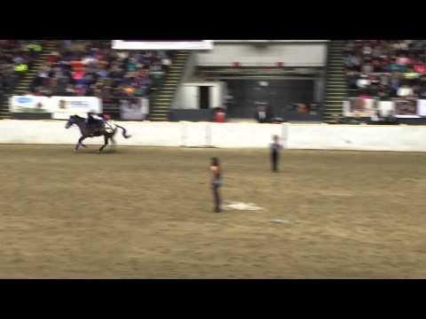 Trick riding part 1 Fantasia 2014
