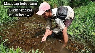 Video Video Lucu Mancing Belut Bikin Ketawa MP3, 3GP, MP4, WEBM, AVI, FLV April 2019