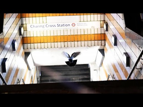 Gasleck in London: 1.500 Menschen in Sicherheit gebracht