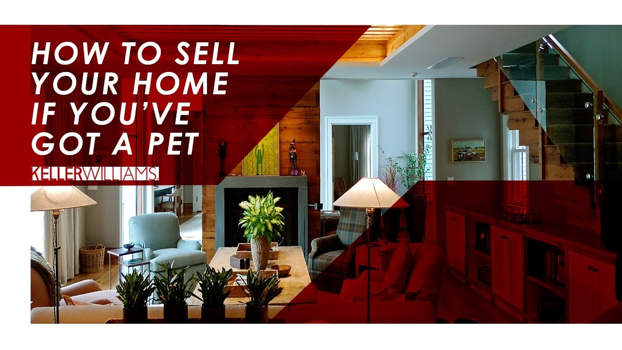 How to Get Your Home Sold If You Have a Pet