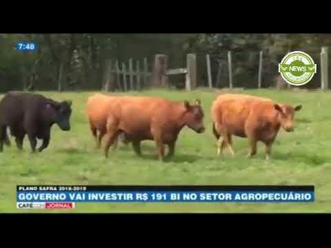 Café com Jornal: Governo vai investir R$ 191 bilhões no setor agropecuário