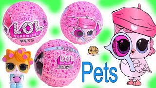 Video LOL Surprise PETS ! NEW Animal Eye Spy Blind Bag Balls + Freebie MP3, 3GP, MP4, WEBM, AVI, FLV Oktober 2018
