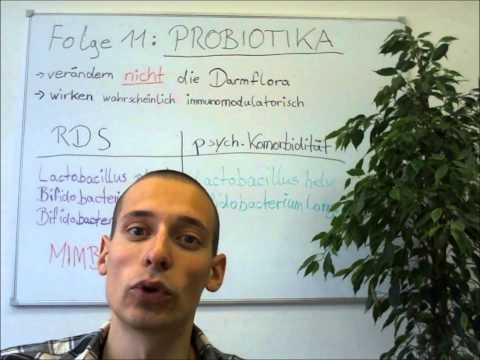 Wie effektiv sind Probiotika? Welche Stämme sind für mich geeignet? (RDS-TV Folge 11)