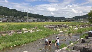 夏の1日。新野高原にて。