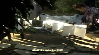 Nonton Art Basil LA in my backyard 2017 Day 1 Film Subtitle Indonesia Streaming Movie Download